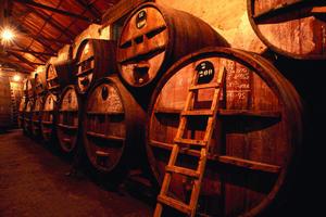 Виноделие и как приготовить вино